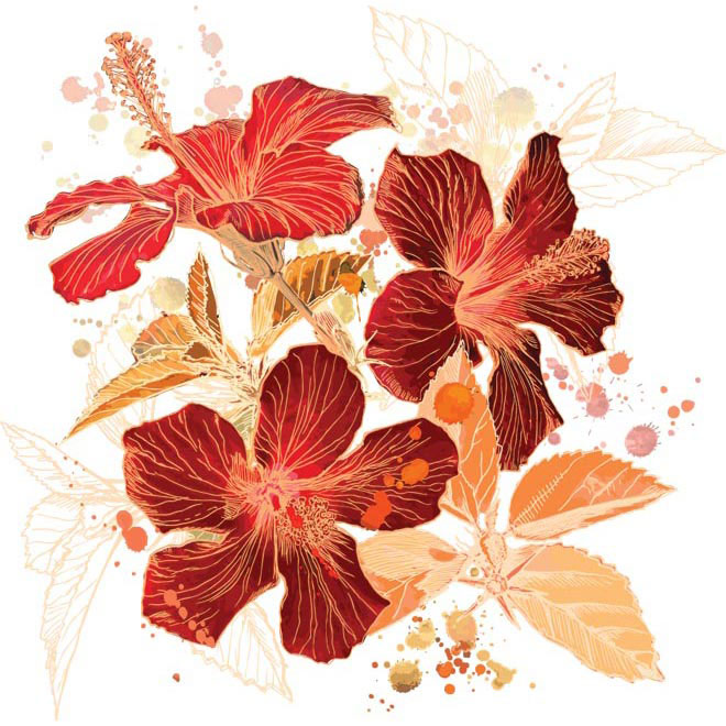 Free vector of Hibiscus Flower stroke illustration