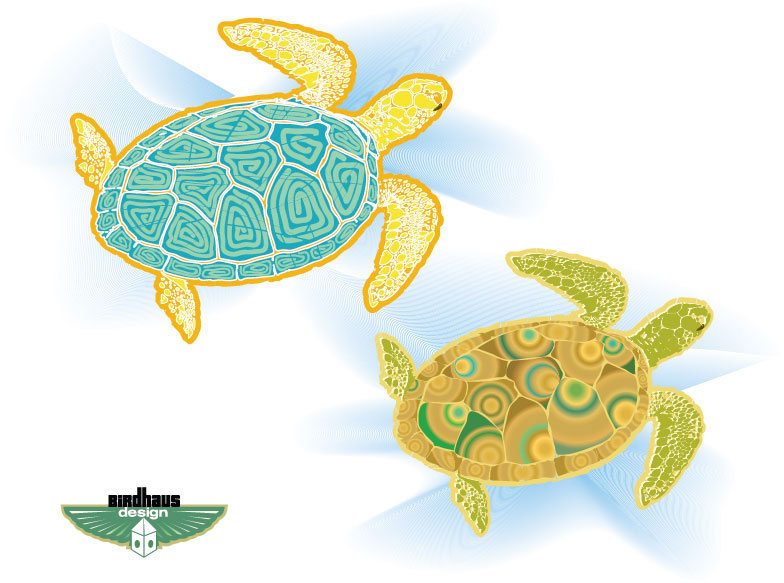 Sea Turtles illustration