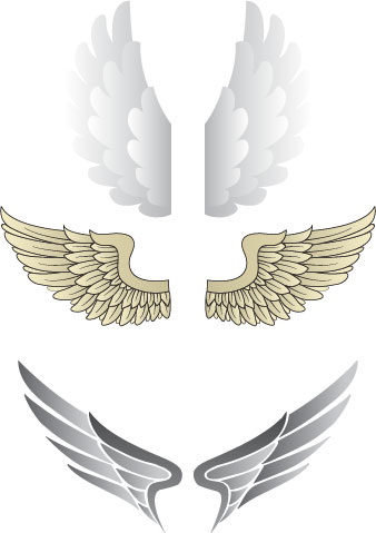 Wings Vectors illustration